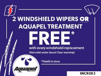 MICR083 - 2 Windshield Wipers or Aquapel treatment FREE